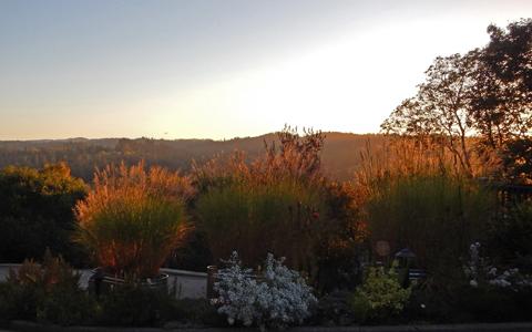 near fall evening