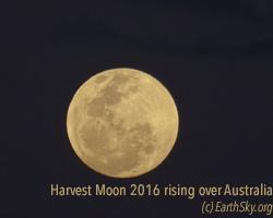 harvest-moon-sidney-australia-e1474044536249