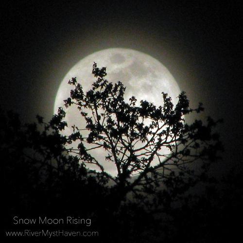 snow-moon-rising