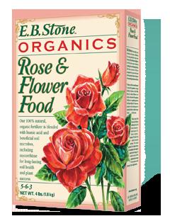 eb-stone-ferts-rose-flower-box