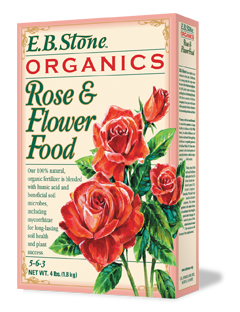 eb-stone-ferts-rose-flower-box